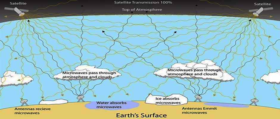 long term microwave environmental effects: unknown